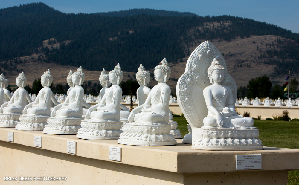 GARDEN OF ONE THOUSAND BUDDHAS-6.jpg