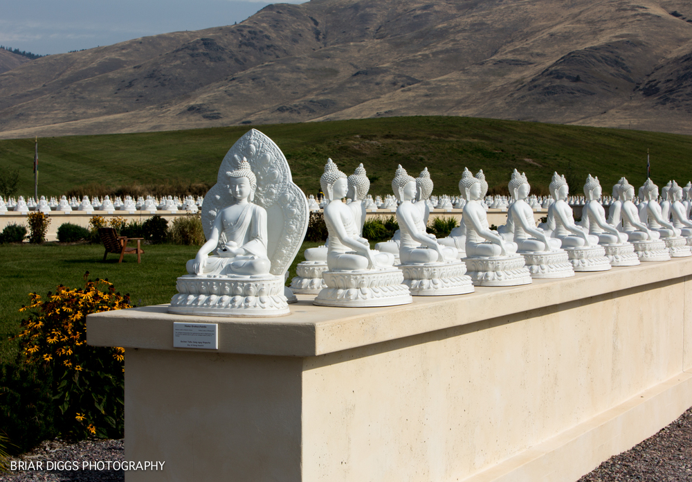 GARDEN OF ONE THOUSAND BUDDHAS-23.jpg