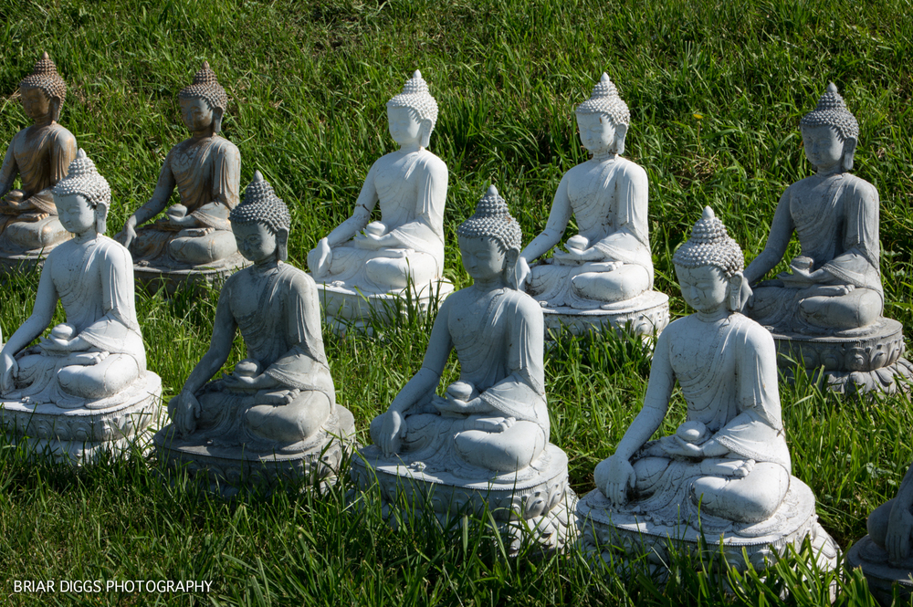 GARDEN OF ONE THOUSAND BUDDHAS-37.jpg