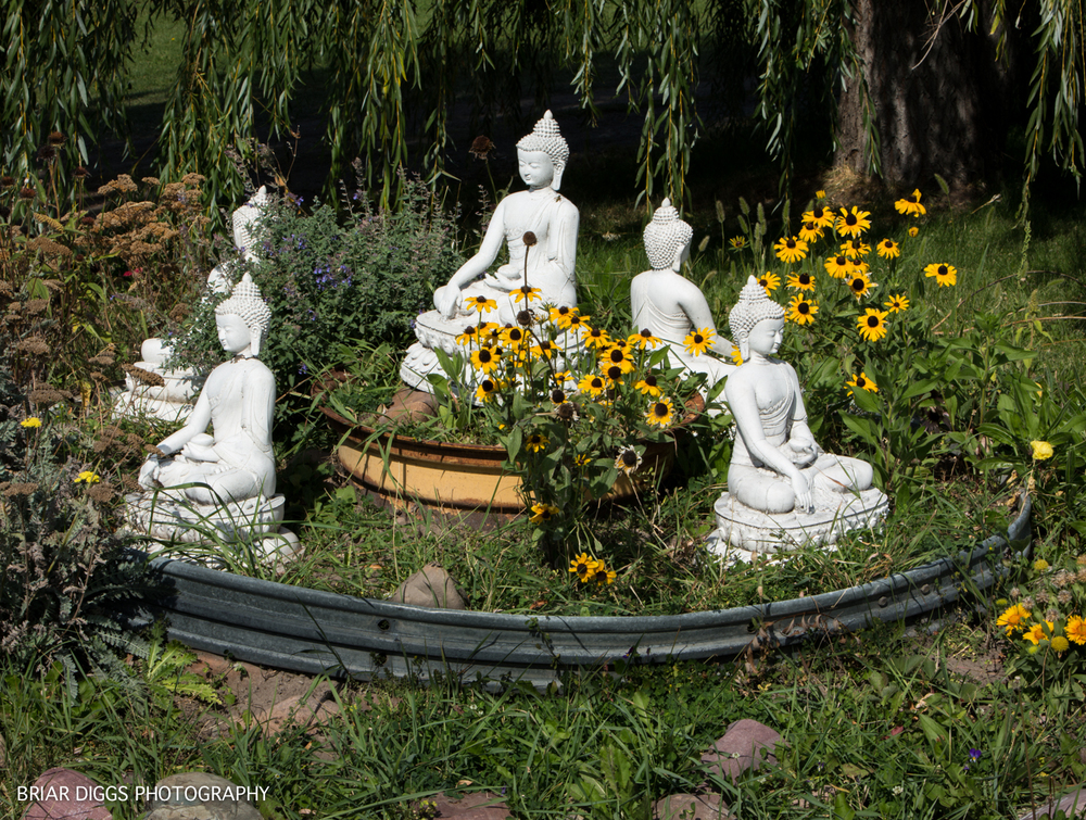 GARDEN OF ONE THOUSAND BUDDHAS-38.jpg