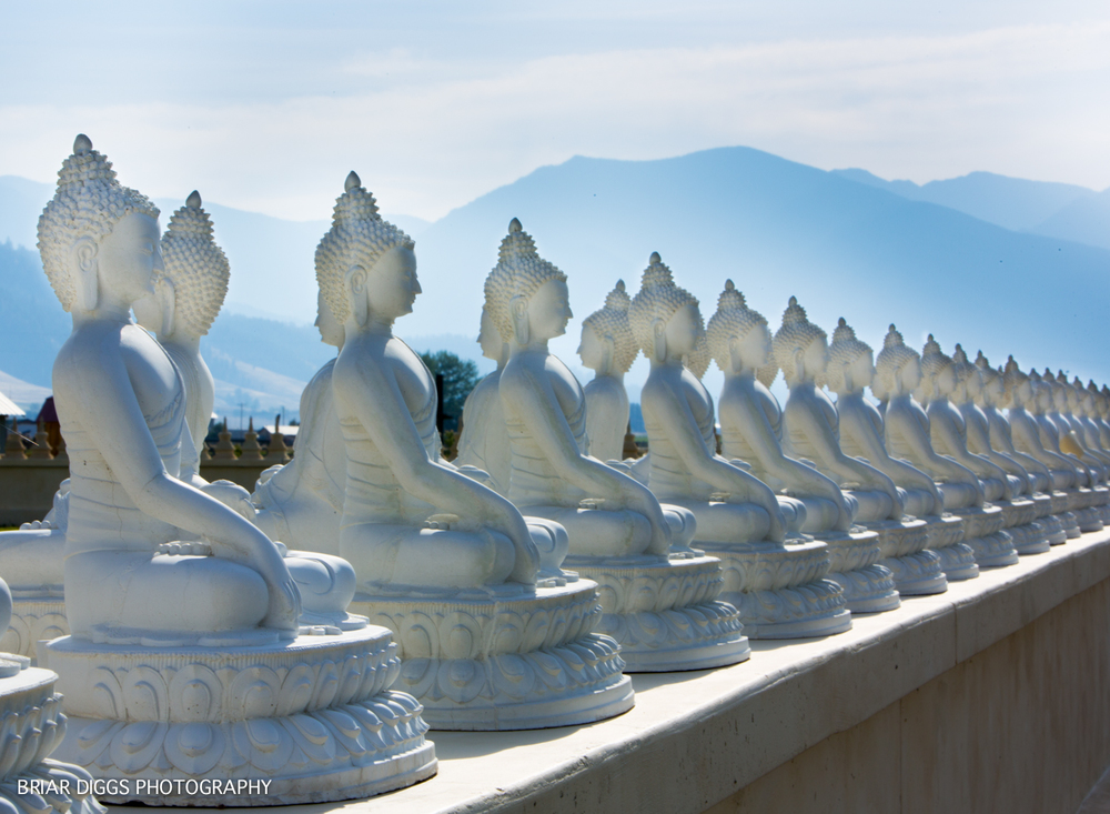 GARDEN OF ONE THOUSAND BUDDHAS.jpg