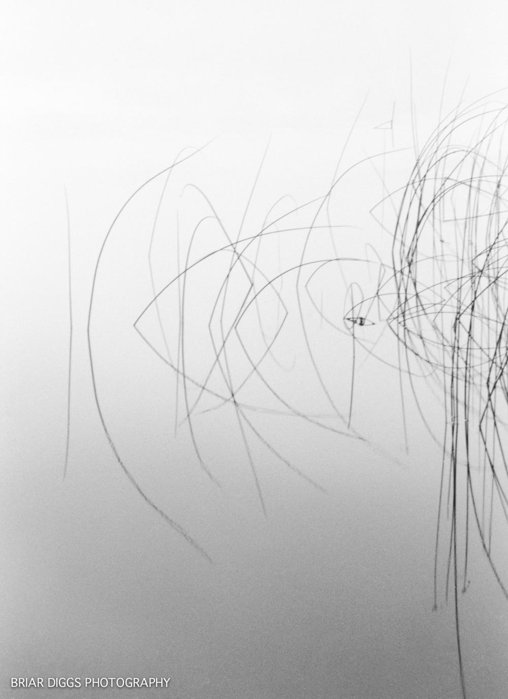 B&W FINE ART IMAGES-103.jpg