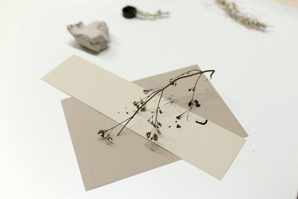 Libby Scarlett / Web design