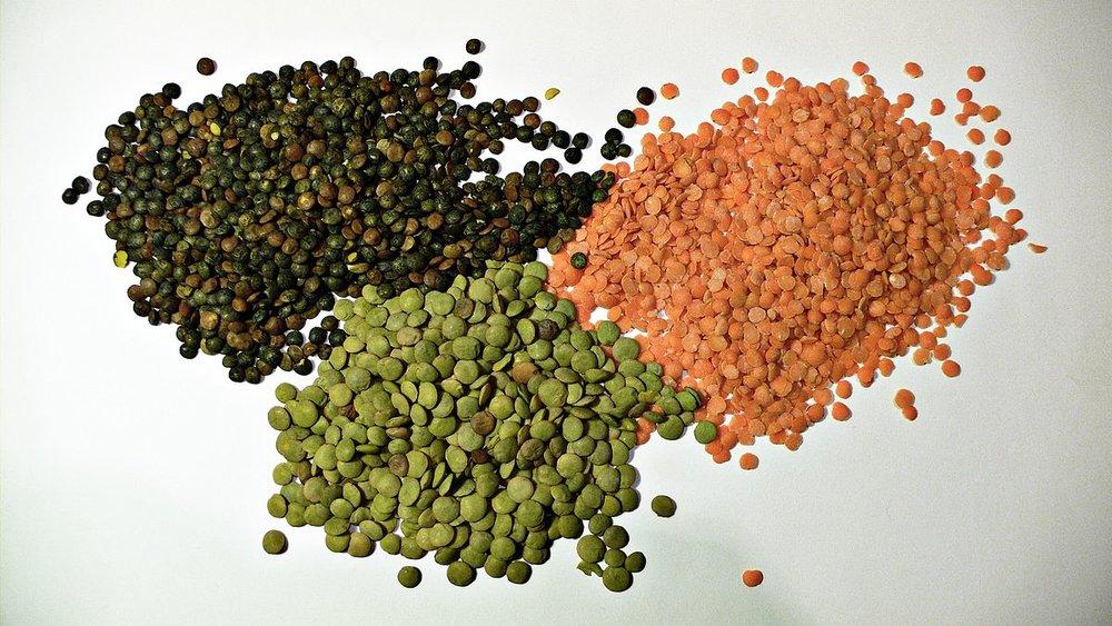 1200px-3_types_of_lentil.jpg