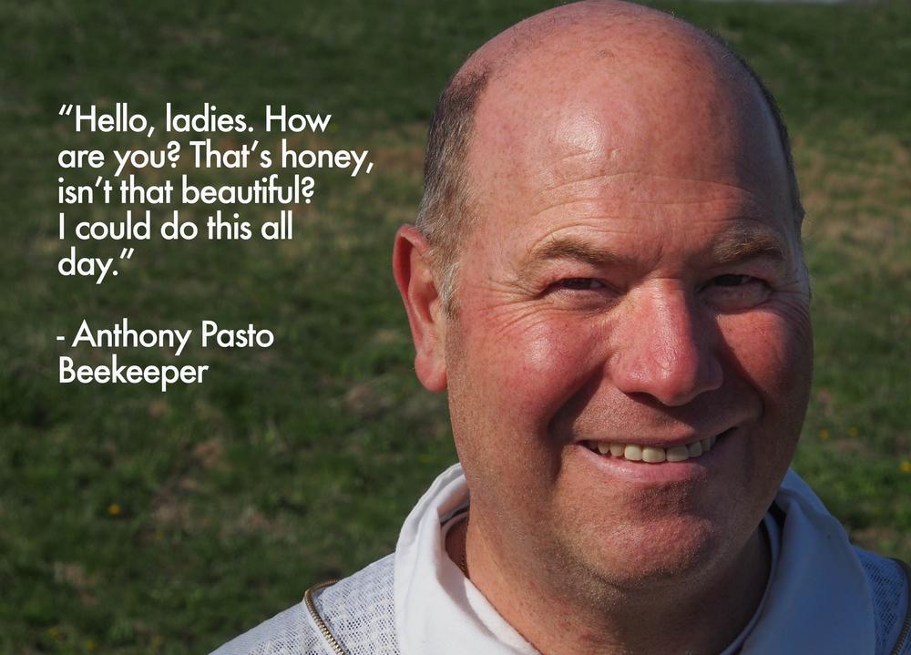 AnthonyPasto.jpg
