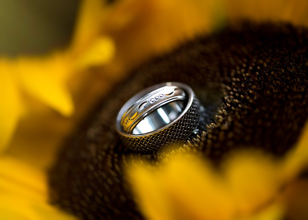 bride and groom ring shot in new england.jpg