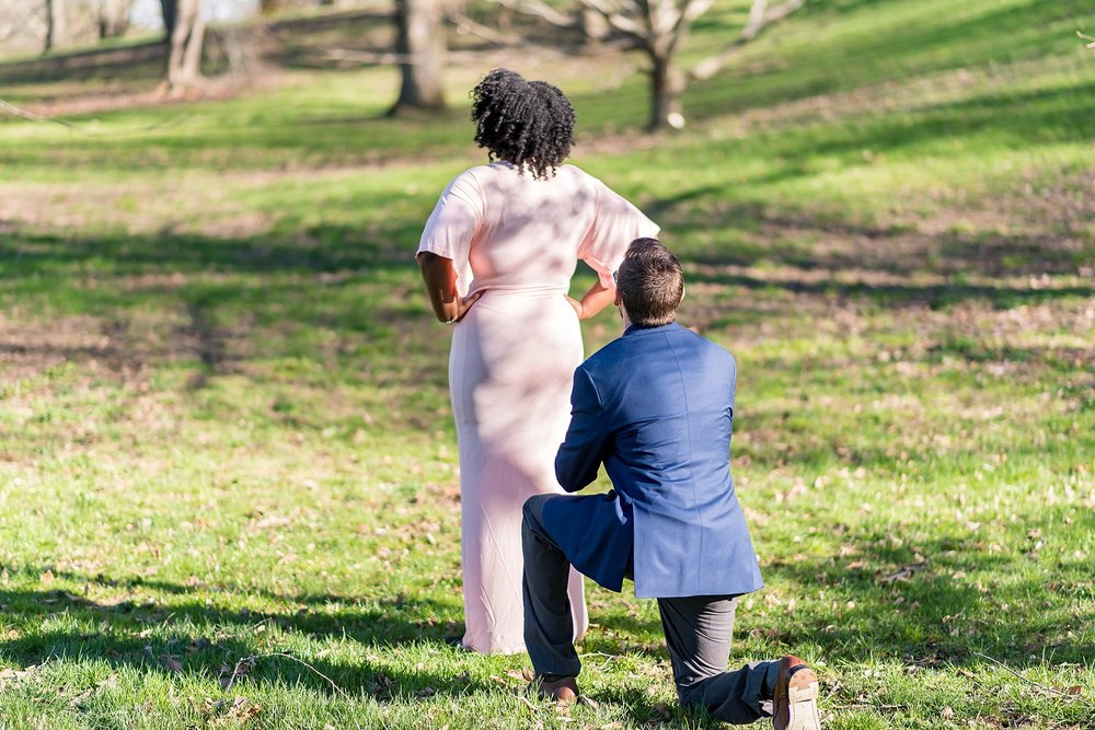 Surprise proposal in Boston