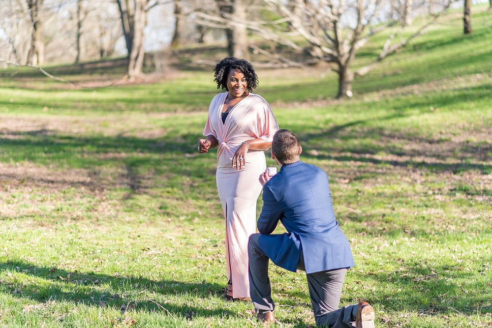 Boston proposal photographer 3.jpg