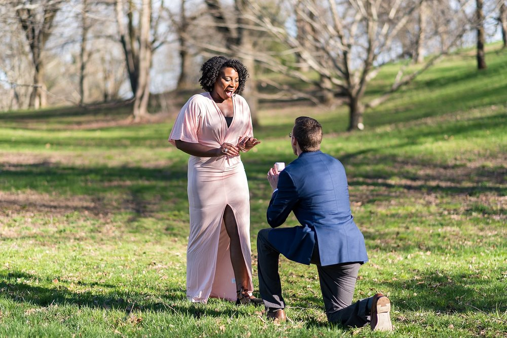 Suprise proposal at Arnold Arboretum.jpg