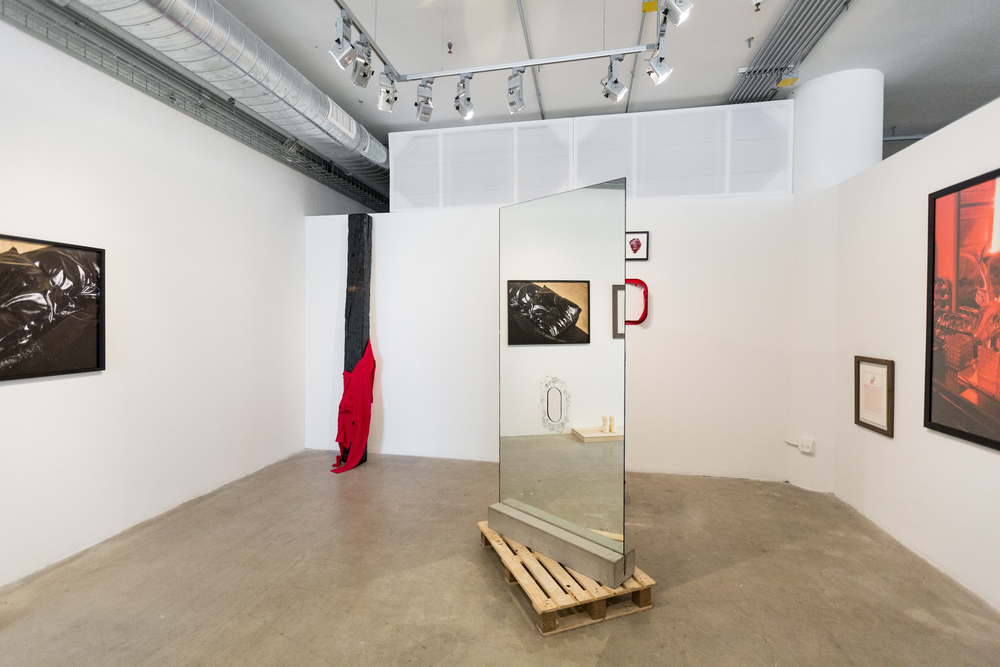 Red Room   Black Views, 2016 (installation View)