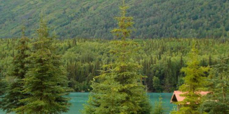 River Front_05.jpg