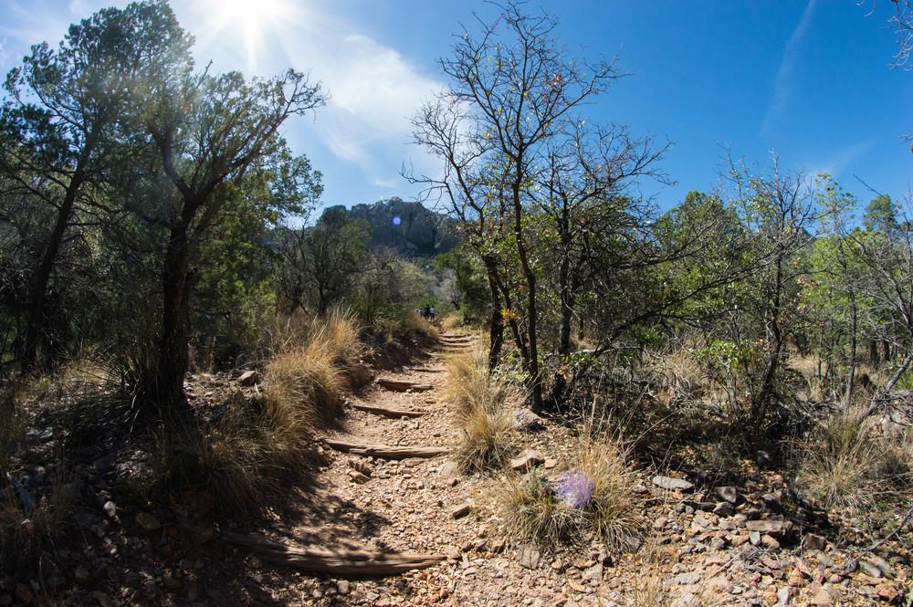 Hiking-11.jpg