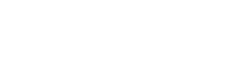 BAJILLION AGENCY