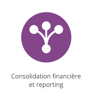 Consolidation financière et reporting