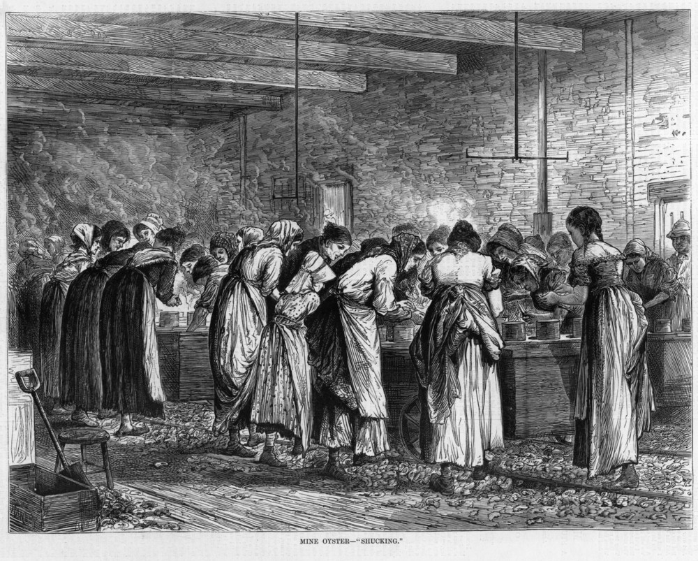 Harper's Weekly illustration of a Baltimore packinghouse, March, 1872. Collection of author.