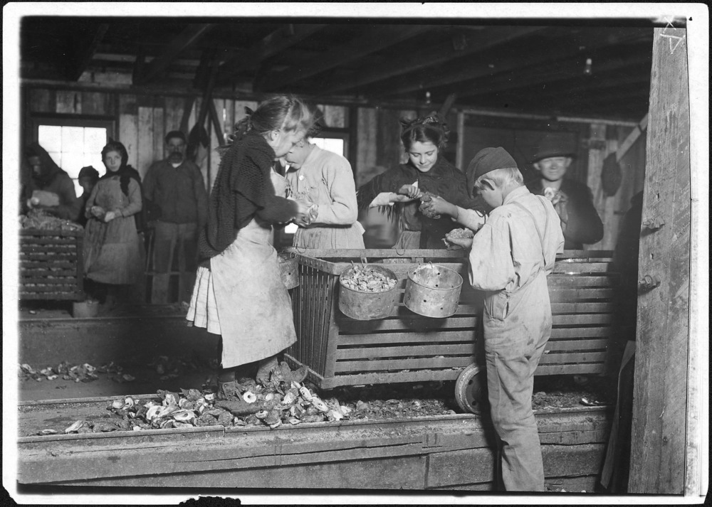 """Little Lottie, a regular oyster shucker"", by Lewis Hine, 1911. Library of Congress Collections."
