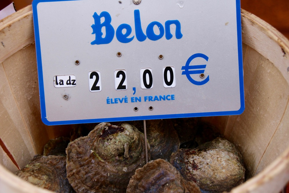 "The native oyster,  Crassostrea edulis , is a rarity in France, where 90% of the oyster harvest is the asian  Crassostrea gigas.  Marketed as ""plates"" or ""Belons,"" these round, flat oysters have an intense flavor profile with a strong coppery finish."