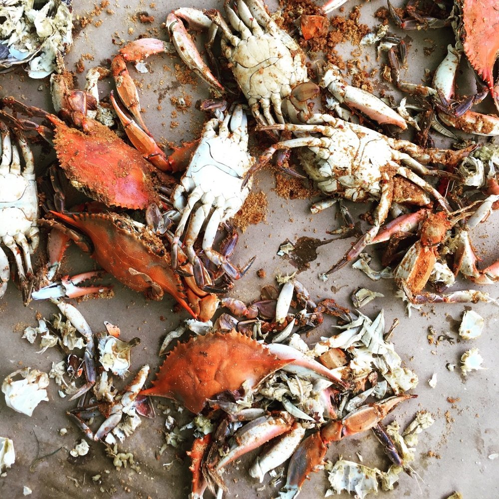 Oh yeah, it's on. Higher temperatures at the end of May have brought on the full flush of the Chesapeake's blue crab bounty. From now until first frost, the crabs will only get fatter- good news for anybody who loves a Sunday spent at a picnic table with an ice-cold beer and a pile of these delicious monsters.