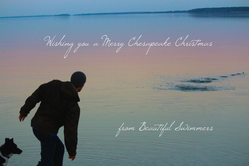 Wishing you a Merry Chesapeake Christmas!