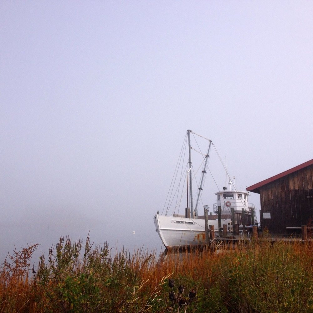 A fall fog stretches the horizon to infinity beyond our St. Michaels, Maryland docks at the Chesapeake Bay Maritime Museum.