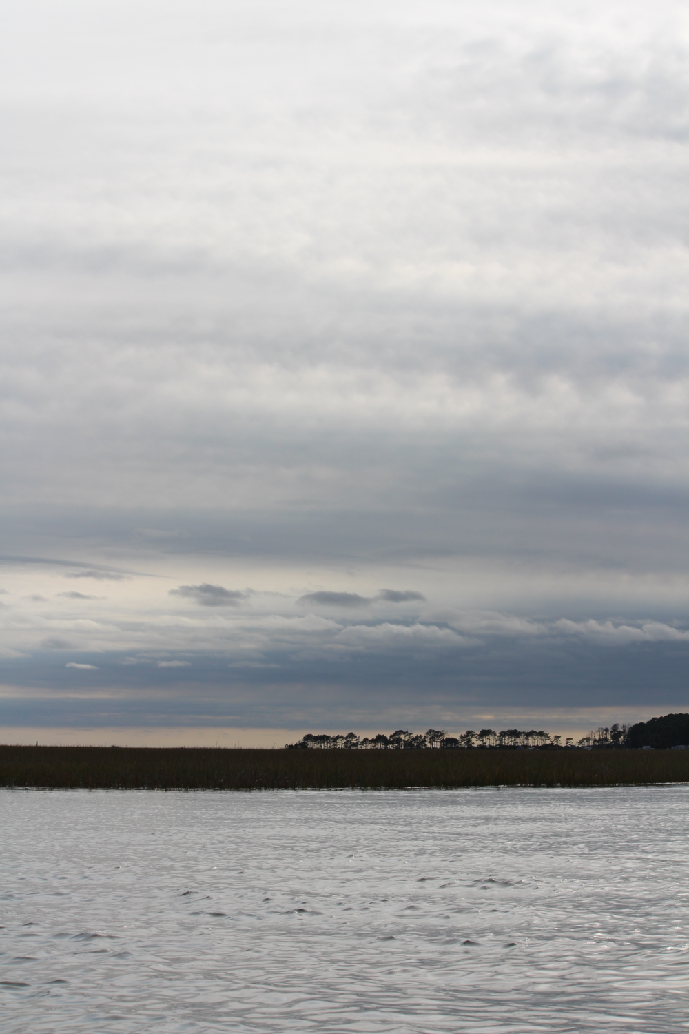 A heavily clouded sky hangs above loblollies and the silver water of the Assateague Channel. This shallow, tidal salt marsh tucked between  Chincoteague Island and   the long tail of Assateague Island is the location of the annual Pony Swim made famous in Marguerite Henry's  Misty of Chincoteague . Barrier islands like Chincoteague, along the ocean side of the Eastern Shore of Maryland and Virginia, are rich environmental landscapes, constantly changing because of shifting sediments, wave action, and erosion.