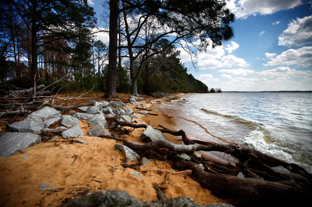 By the end of the century, ocean levels could rise by 2 or 3 feet. That's enough to flood the colonists' first settlement at Jamestown, Va. And it's putting pressure on archaeologists to get as many artifacts out of the ground as quickly as possible — before it's too late.   —  With Rising Seas, America's Birthplace Could Disappear     Photo: John Poole/NPR           Although erosion is a constant face of life in the Chesapeake Bay (and has been since the last ice age), the effects are compounded by sea level rise. It begs the question- what will be left of the landscape, marshes, and historic structures of the Bay's watershed once the water begins to slowly reach into the land? Certainly, it isn't a future John Smith ever could have foretold.