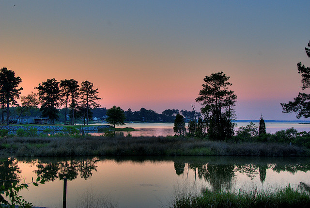 esteldin :      Sturgeon Creek  by  jon_beard  on Flickr.     Thinking about Chesapeake summers, at the end of a long, cold winter.