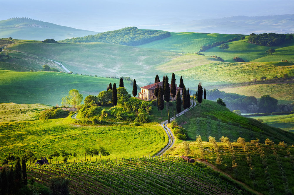 The Tuscan hillside.