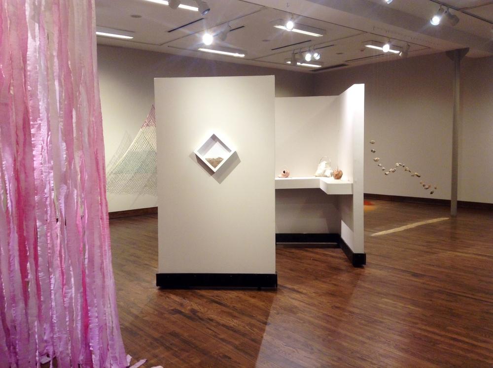 tierrafirme_exhibitionsimages_1.jpg