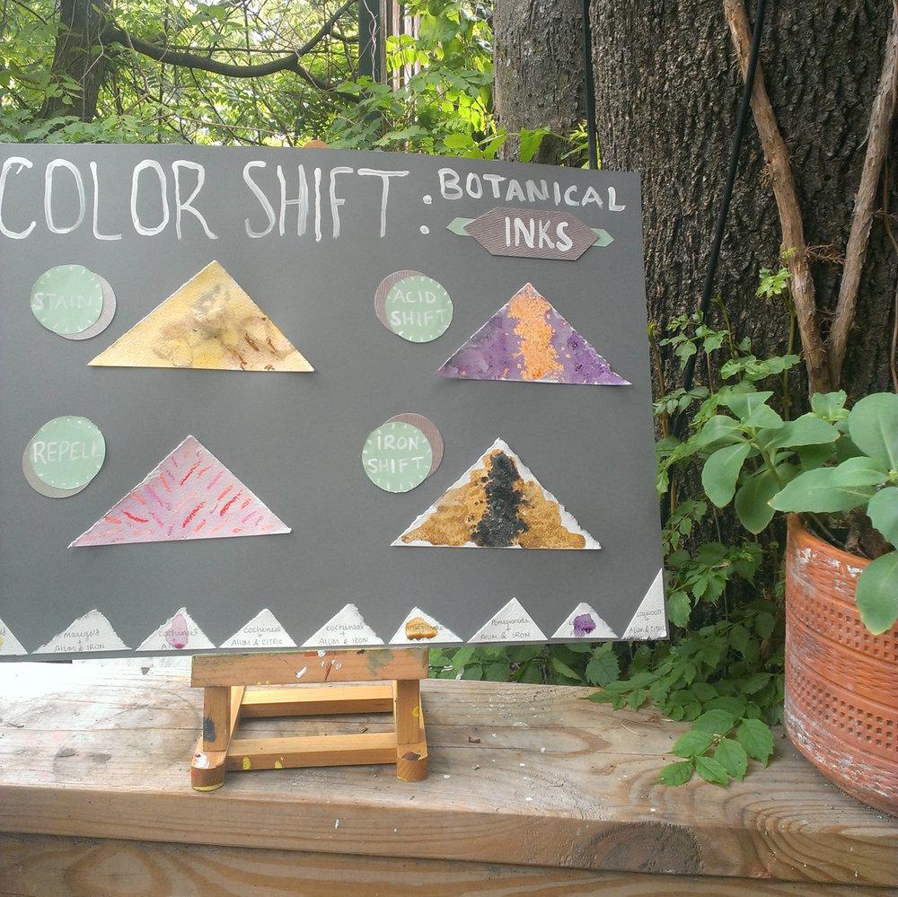 color shifts; botanical inks.jpg