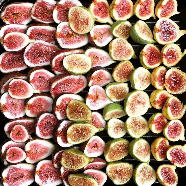 FIGS!! 🍆 #figs
