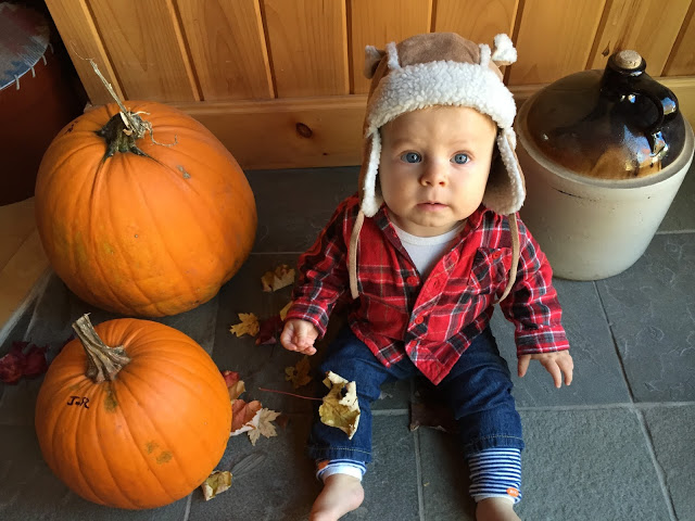 fall style_baby style_fall in the catskill_baby and pumpkin