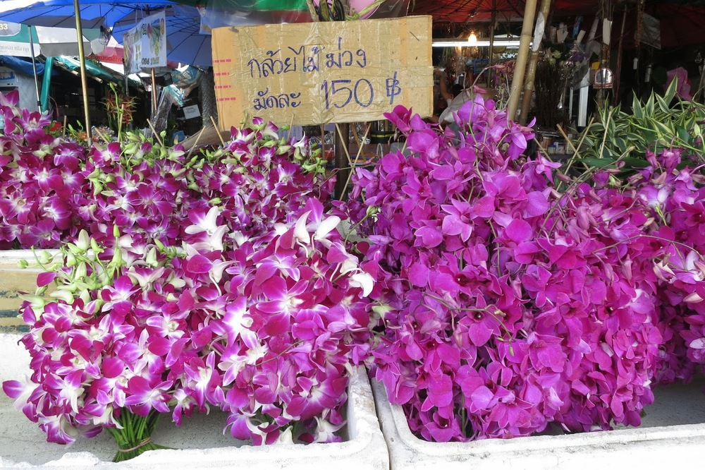 ORCHID MARKET IN THAILAND
