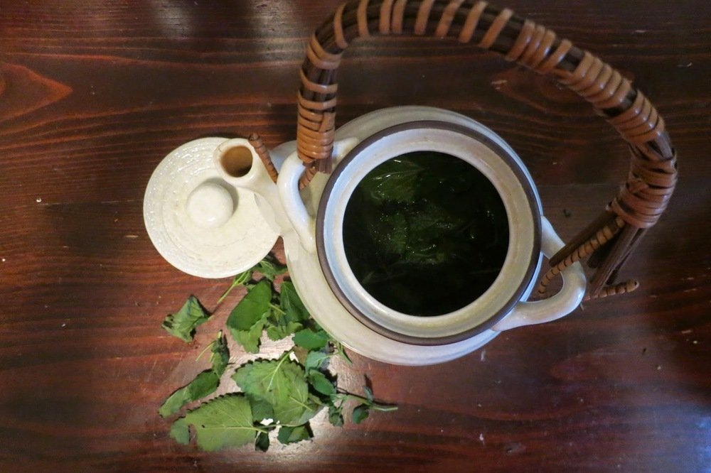 HOT LEMON BALM TEA