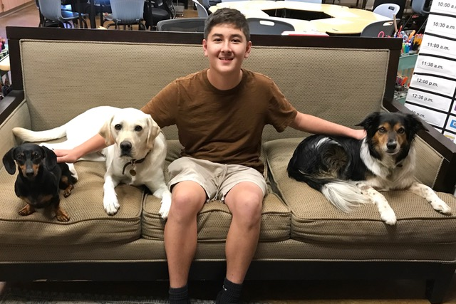 Burlingame University student Justin Entenmann sits with the facility dogs Cecil (left), Moose (middle) and Ellie (right).