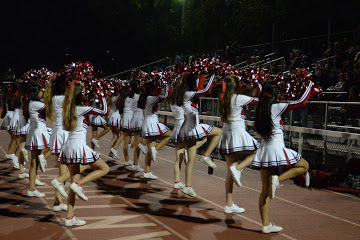 The cheerleaders perform their touchdown dance after the Panthers score another touchdown.