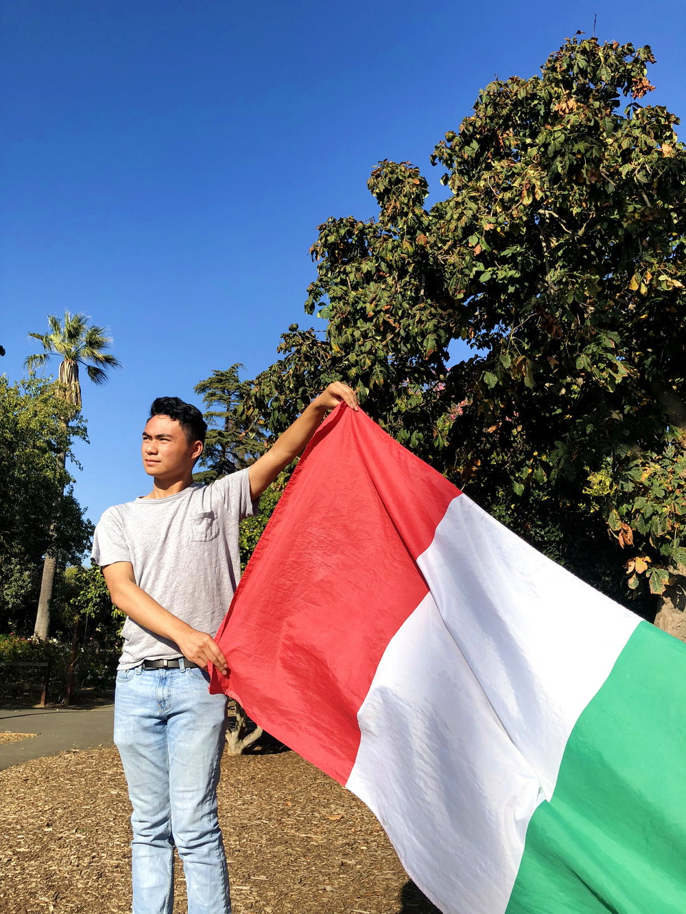 Alex Mak taught himself Italian in 6 months, and then directly enrolled in AP Italian.