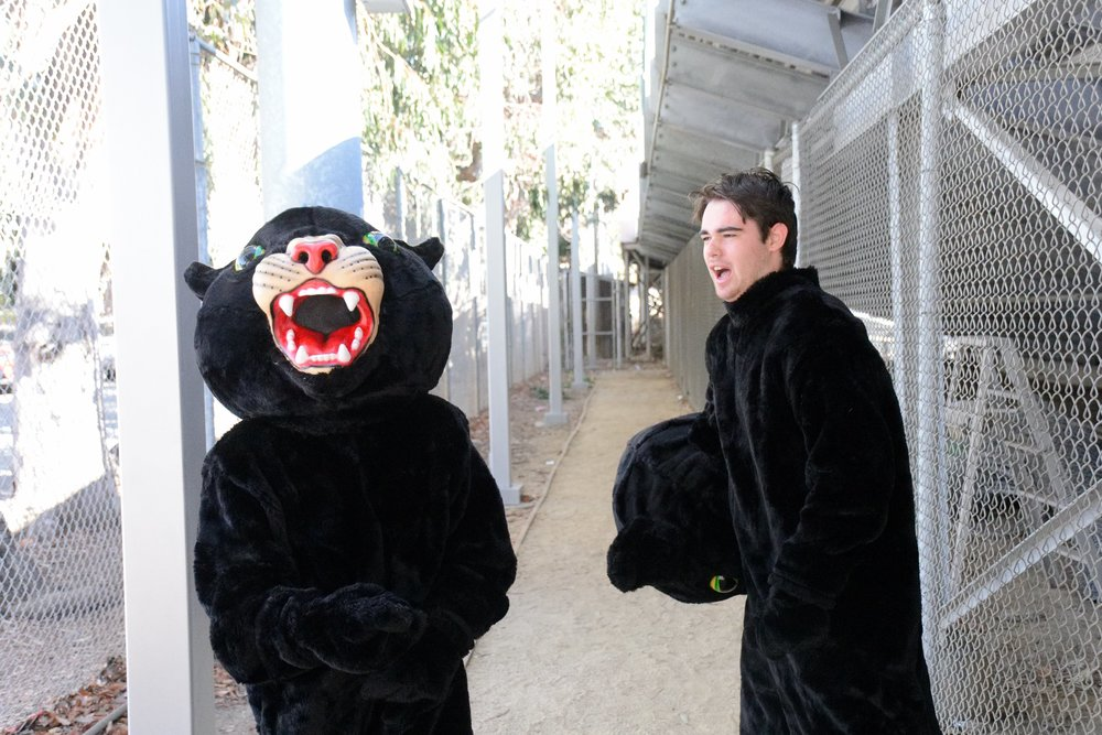 Senior Alessandro Franco and a masked panther prepare for the Little Big Game rally.