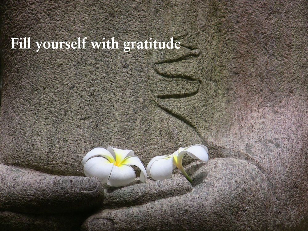 Fill yourself with gratitude.jpg