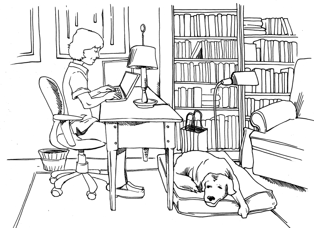 Illustration by Jaime Buckley