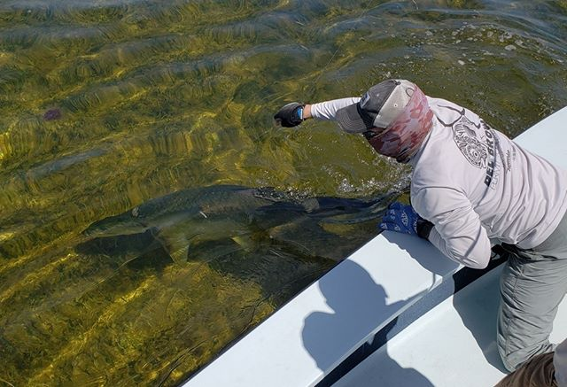 Going for the lip... 📷: Joe Sugura  #fishneedwater #keepemwet #echolife