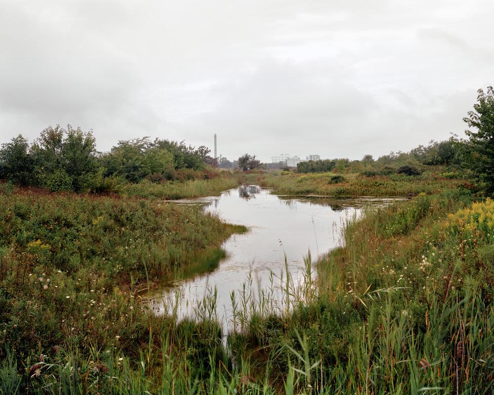 Dow Wetlands, 102 x 127 cm