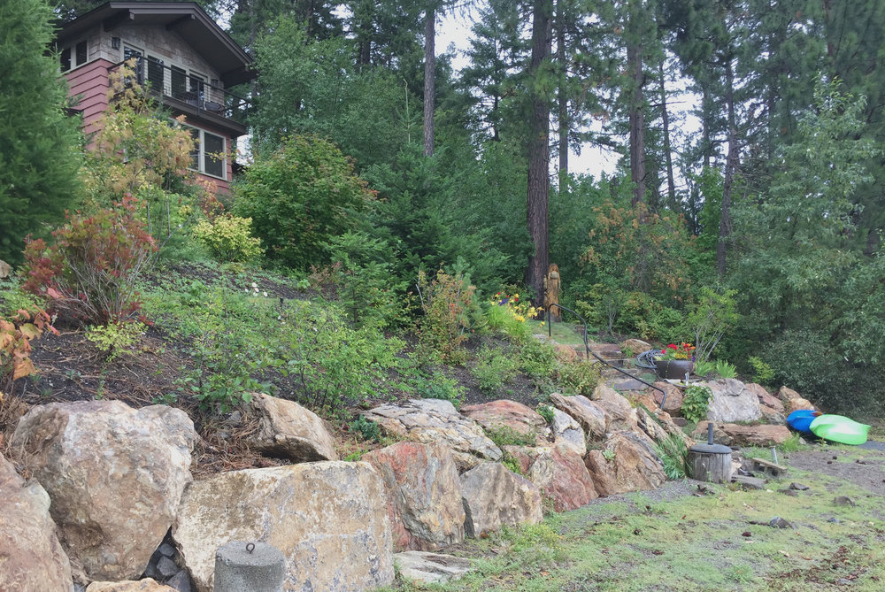 kootenai county lakefront natural landscaping
