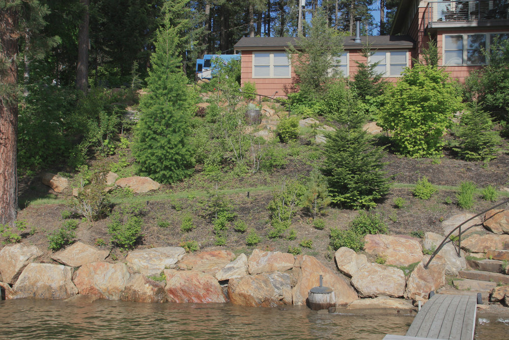 kootenai county lake cabin landscaping