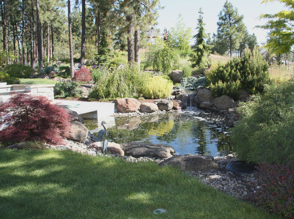 water-feature-pond-1.JPG
