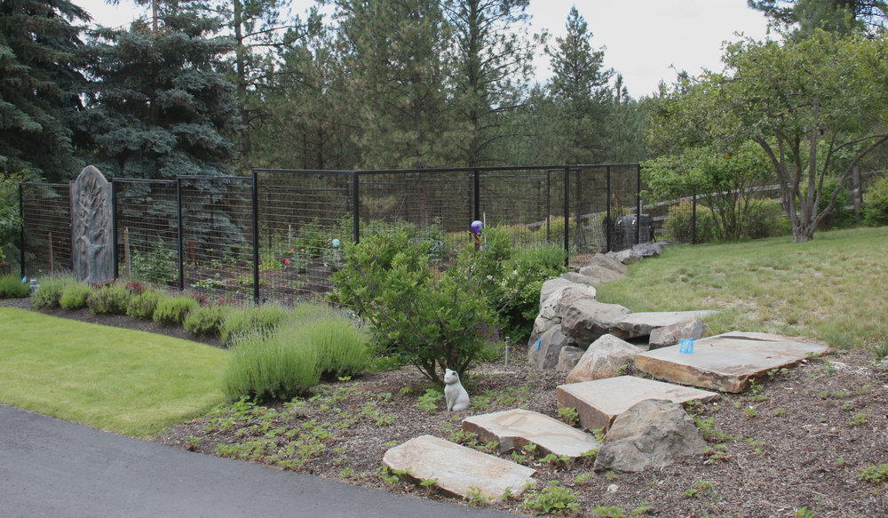 metal deer fencing for vegetable garden