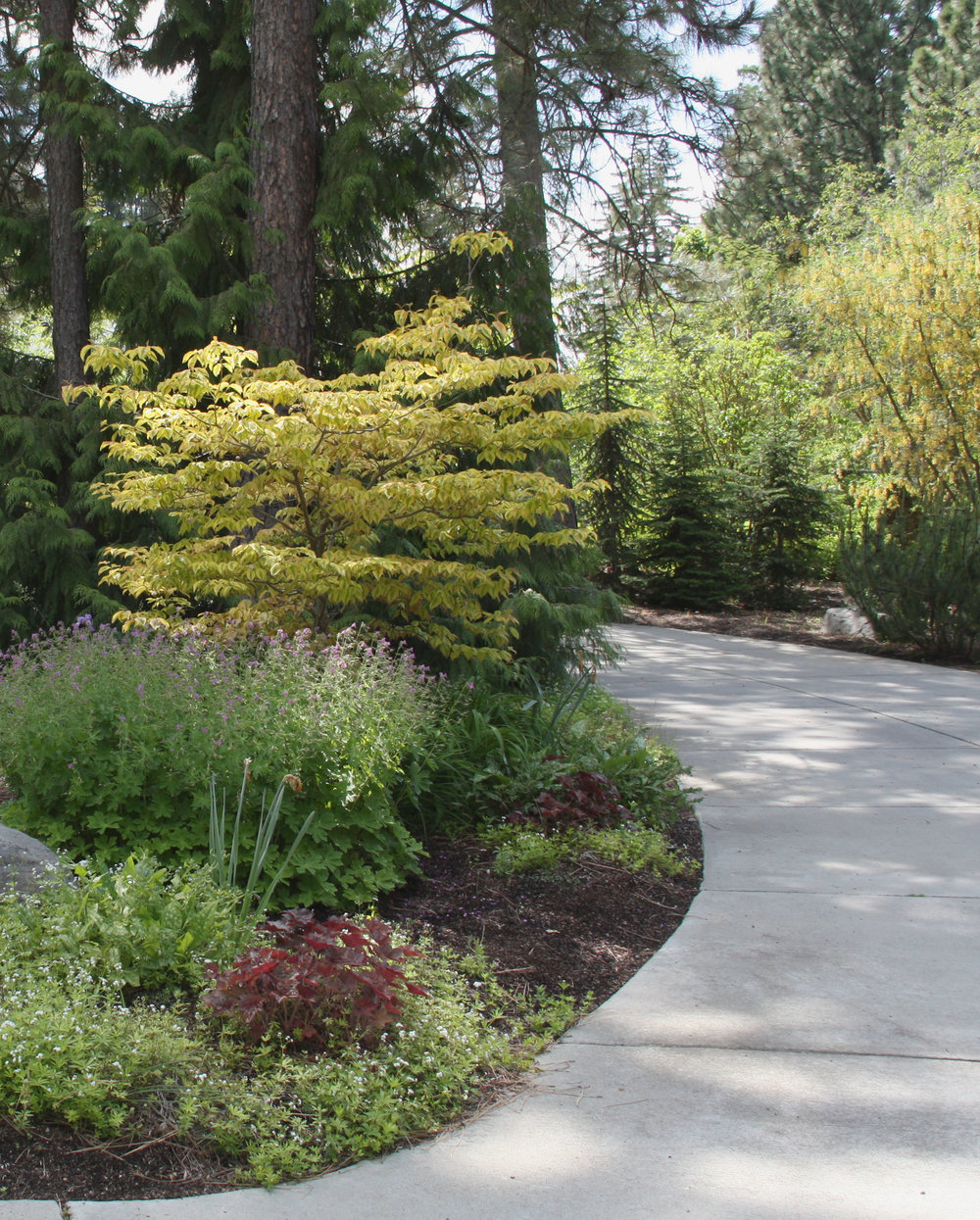 Broom-finished concrete is a popular choice for driveways.