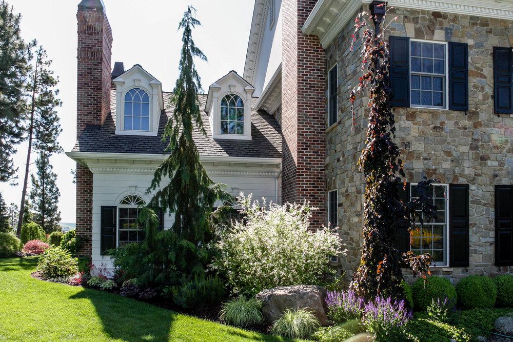 spokane landscaping weeping alaskan cedar weeping purple beech