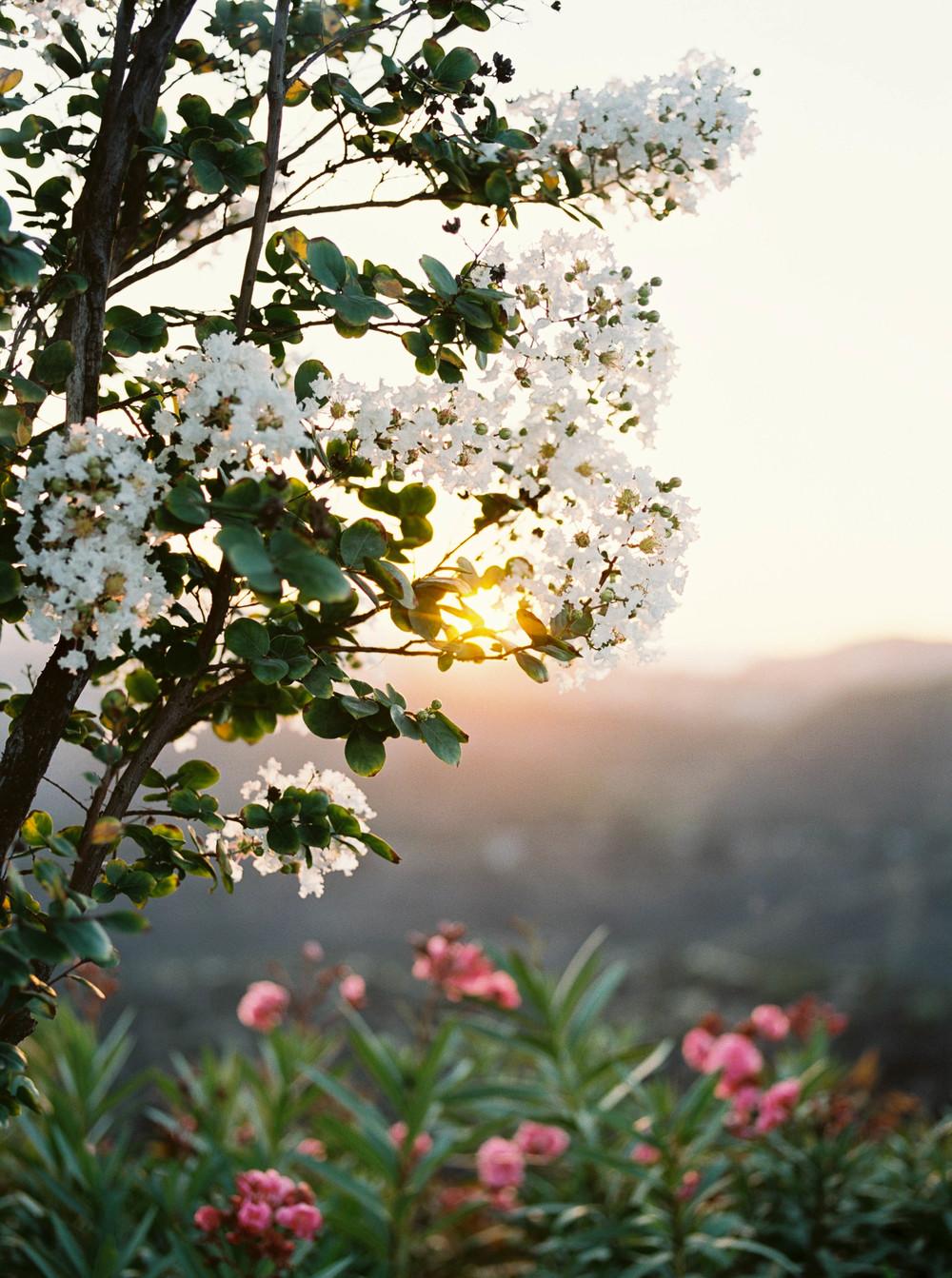 Alyssa Joy Photography - Los Angeles, CA travel photographer