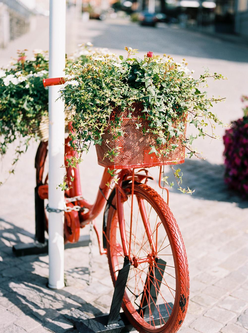 Alyssa Joy Photography - Haugesund, Norway travel photographer